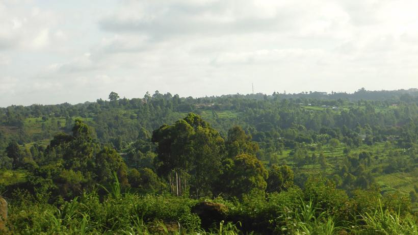 Paesaggi dell'Africa